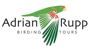 Adrian Rupp Birding Tours – Birdwatching trips in Brazil, Argentina and Peru